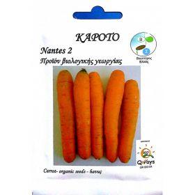 Βιολογικός Σπόρος Καρότο