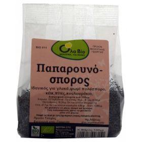 ΠΑΠΑΡΟΥΝΟΣΠΟΡΟΣ - Poppy seeds