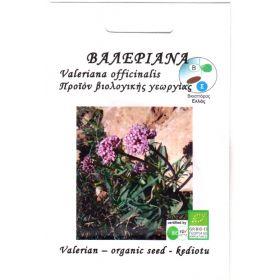 Βιολογικός Σπόρος Βαλεριάνα