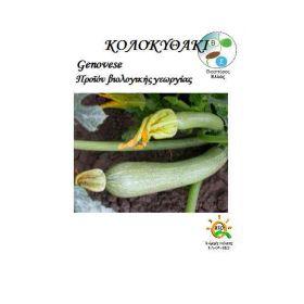 Βιολογικοί Σπόρος Κολοκυθάκι genovese
