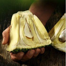 Jackfruit bio 400ml (BIO-ZENTRALE)