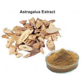 Organic Astragalus Powder Bio
